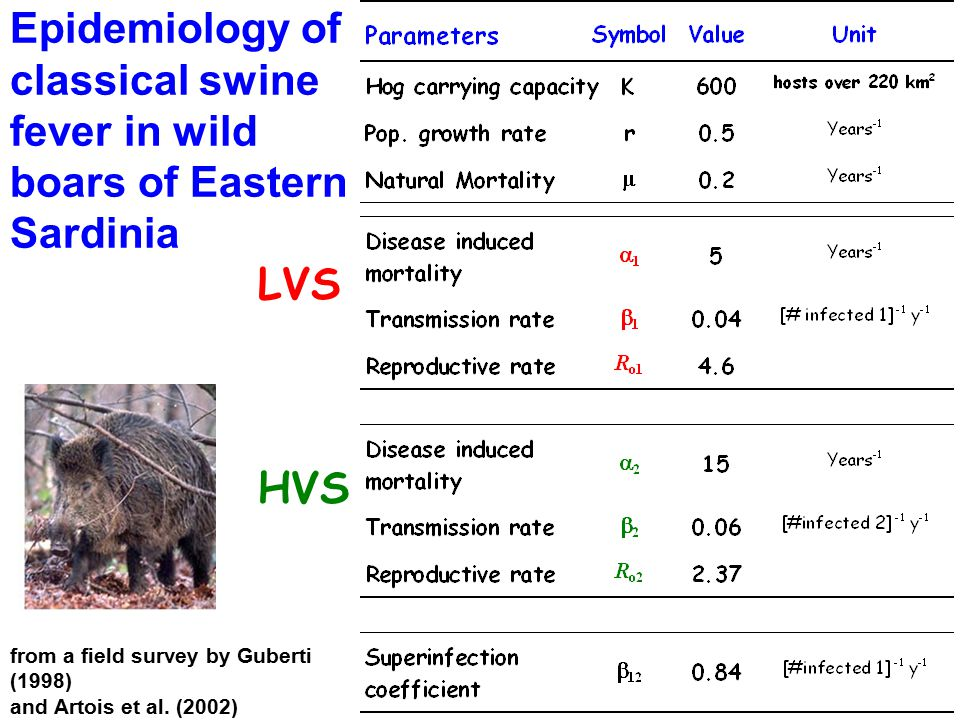Epidemiology of classical swine fever in wild boars of Eastern Sardinia LVS HVS from a field survey by Guberti (1998) and Artois et al. (2002)