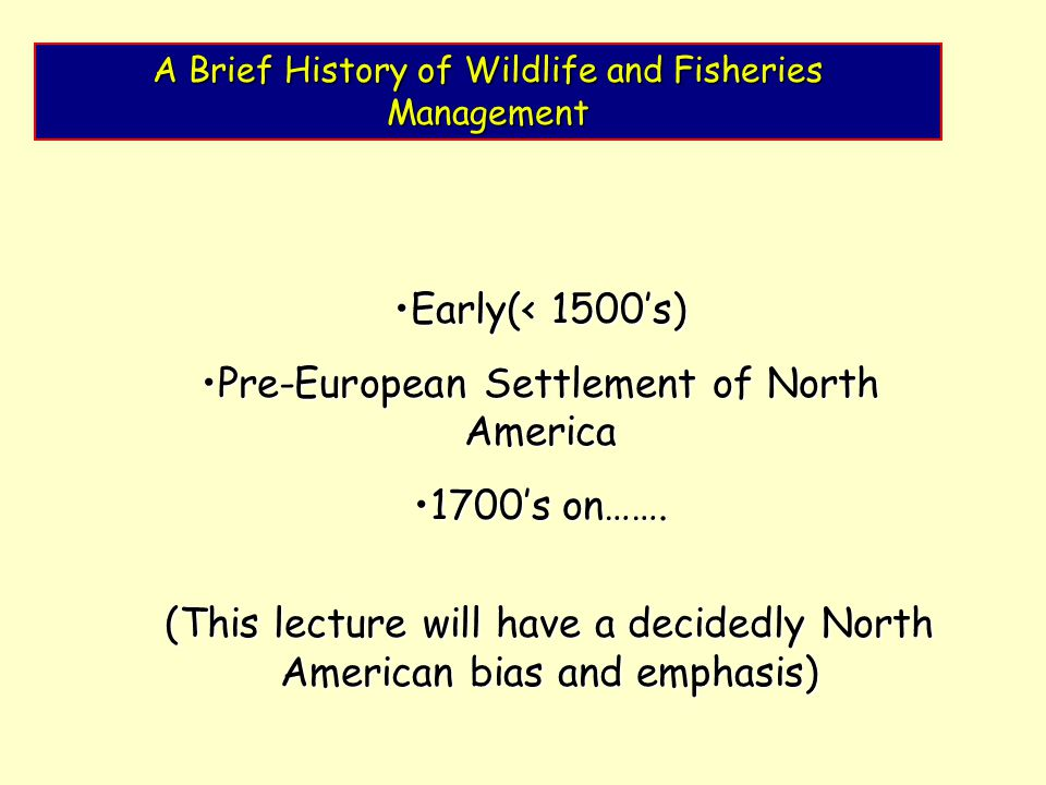 A Brief History of Wildlife and Fisheries Management Early(< 1500's)Early(< 1500's) Pre-European Settlement of North AmericaPre-European Settlement of