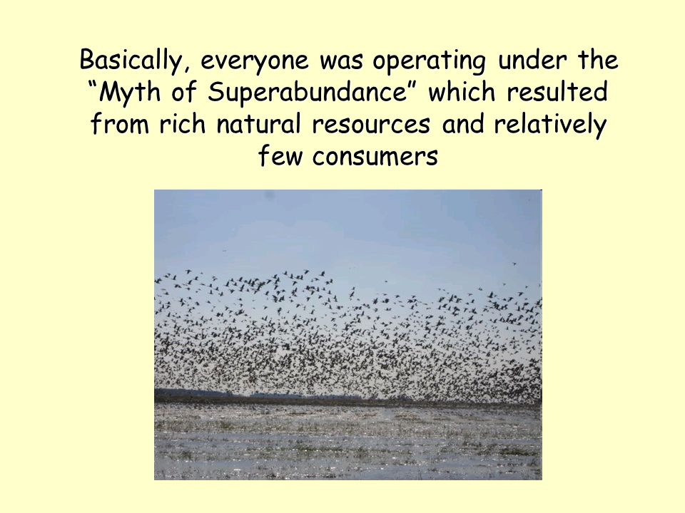 """Basically, everyone was operating under the """"Myth of Superabundance"""" which resulted from rich natural resources and relatively few consumers"""