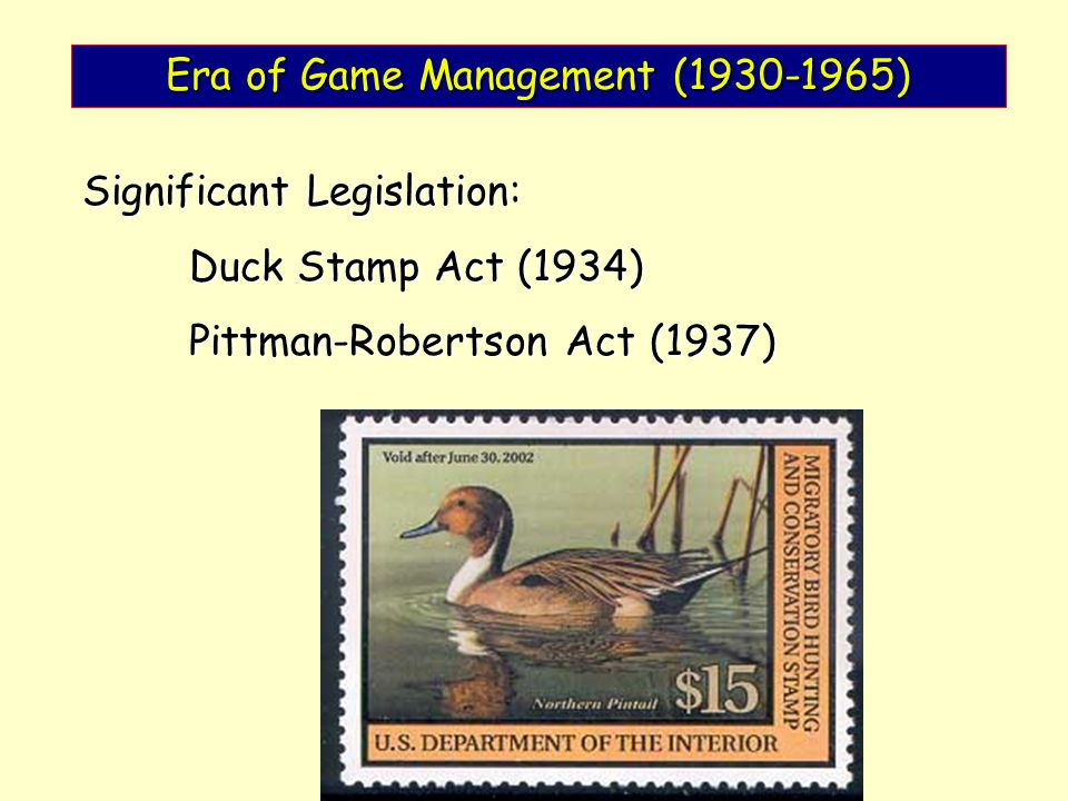 Era of Game Management (1930-1965) Significant Legislation: Duck Stamp Act (1934) Pittman-Robertson Act (1937)