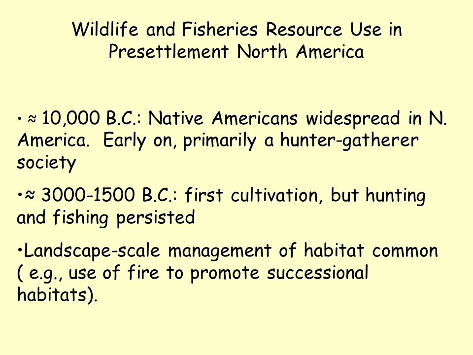 Wildlife and Fisheries Resource Use in Presettlement North America ≈ 10,000 B.C.: Native Americans widespread in N. America. Early on, primarily a hun