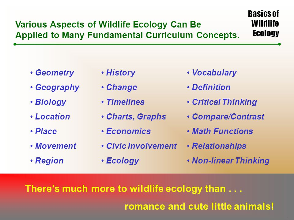 Basics of Wildlife Ecology Various Aspects of Wildlife Ecology Can Be Applied to Many Fundamental Curriculum Concepts.