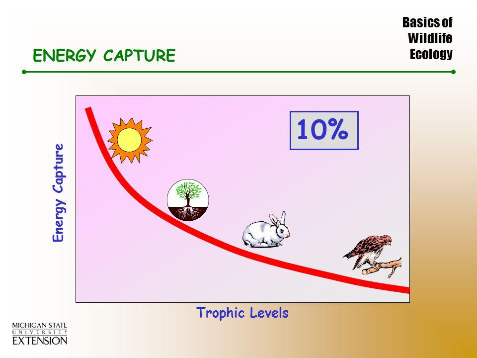Basics of Wildlife Ecology ENERGY CAPTURE Energy Capture Trophic Levels 10%