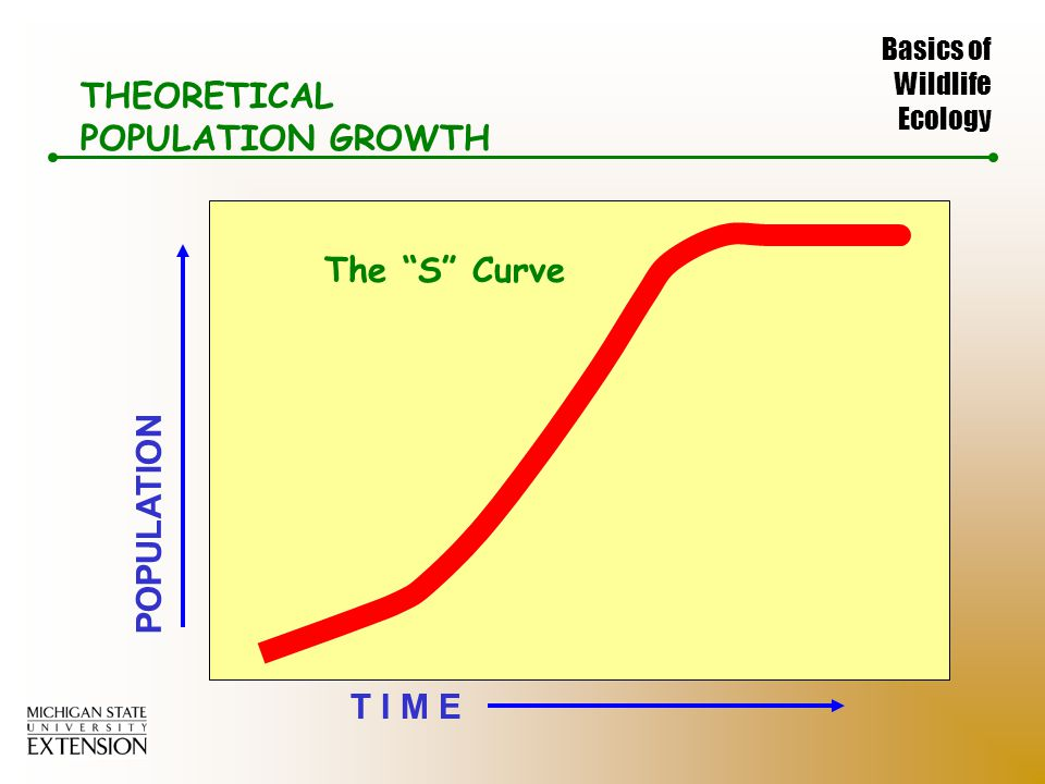 Basics of Wildlife Ecology s-curve T I M E POPULATION THEORETICAL POPULATION GROWTH The S Curve