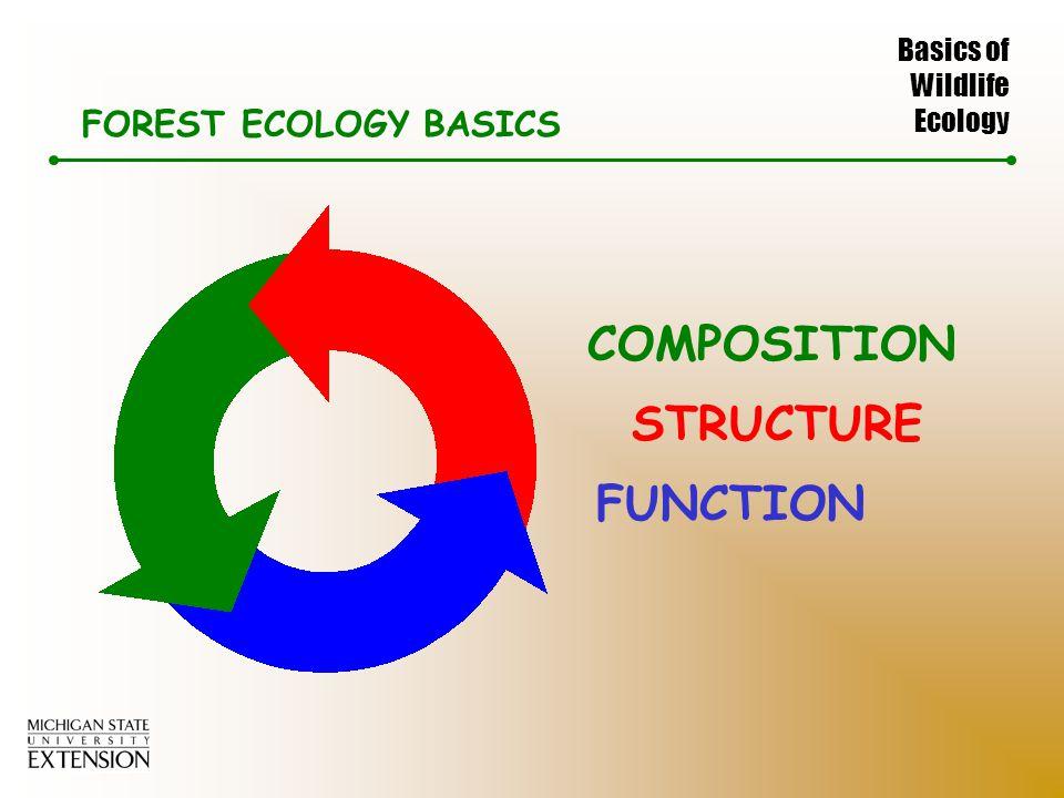 Basics of Wildlife Ecology FOREST ECOLOGY BASICS COMPOSITION STRUCTURE FUNCTION