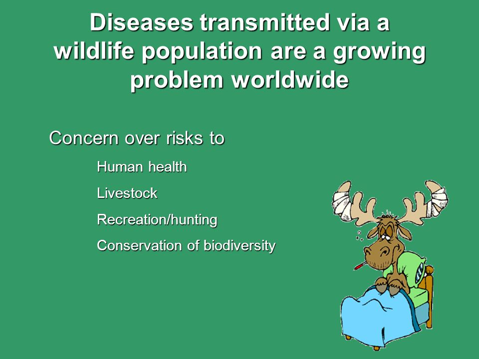 Concern over risks to Human health LivestockRecreation/hunting Conservation of biodiversity Diseases transmitted via a wildlife population are a growing problem worldwide