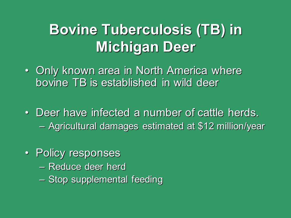 Bovine Tuberculosis (TB) in Michigan Deer Only known area in North America where bovine TB is established in wild deerOnly known area in North America
