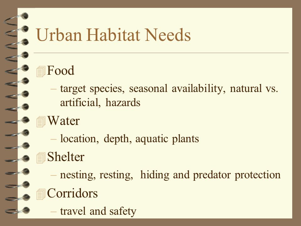 Urban Habitat Needs 4 Food –target species, seasonal availability, natural vs.