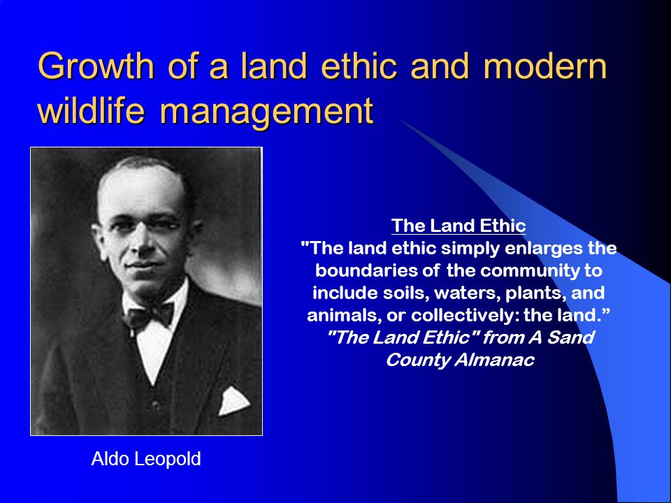 Growth of a land ethic and modern wildlife management Aldo Leopold The Land Ethic The land ethic simply enlarges the boundaries of the community to include soils, waters, plants, and animals, or collectively: the land. The Land Ethic from A Sand County Almanac