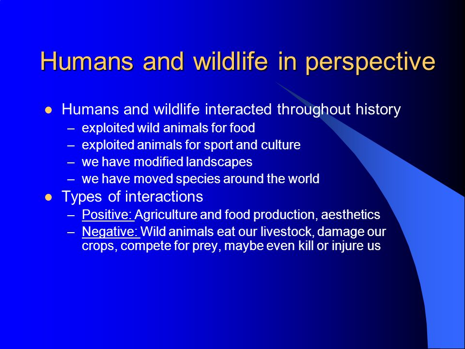 Humans and wildlife in perspective Humans and wildlife interacted throughout history –exploited wild animals for food –exploited animals for sport and culture –we have modified landscapes –we have moved species around the world Types of interactions –Positive: Agriculture and food production, aesthetics –Negative: Wild animals eat our livestock, damage our crops, compete for prey, maybe even kill or injure us