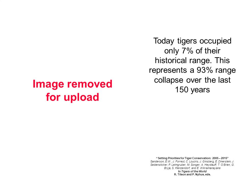 Today tigers occupied only 7% of their historical range.