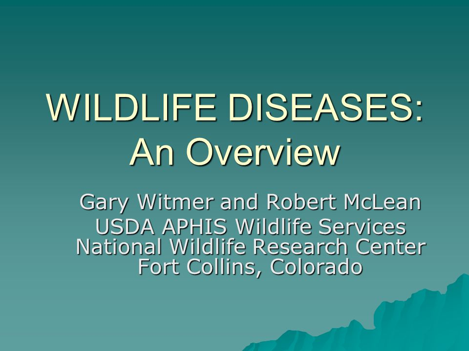 WILDLIFE DISEASES: An Overview Gary Witmer and Robert McLean USDA APHIS Wildlife Services National Wildlife Research Center Fort Collins, Colorado