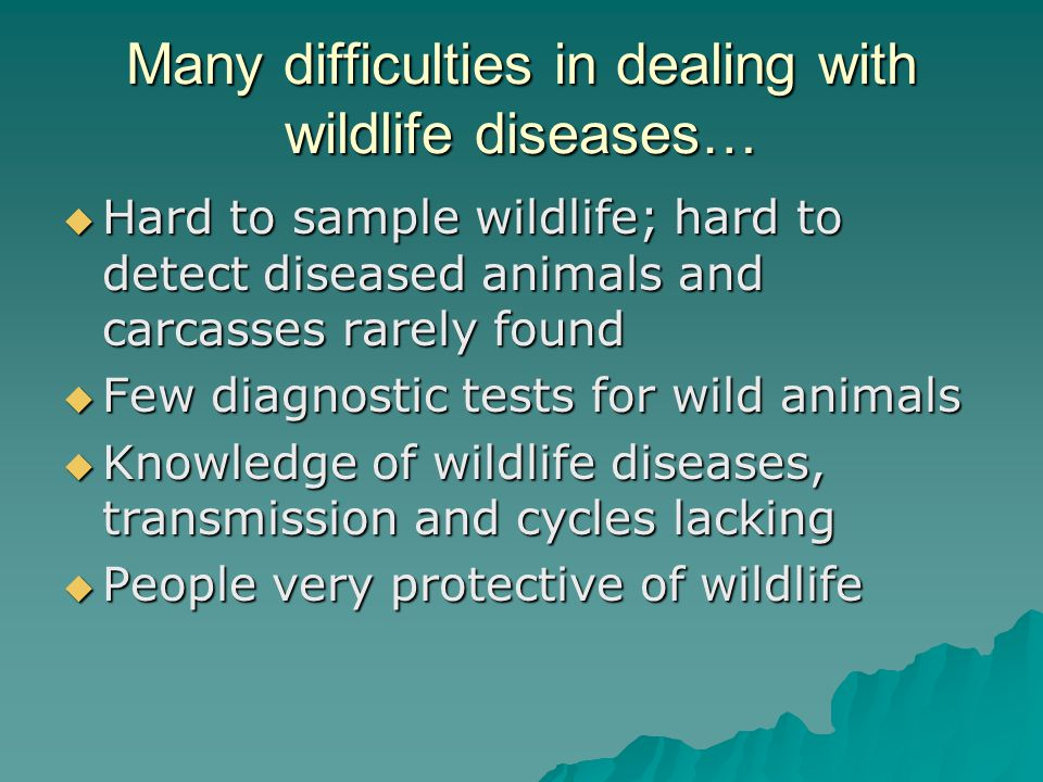 Many difficulties in dealing with wildlife diseases…  Hard to sample wildlife; hard to detect diseased animals and carcasses rarely found  Few diagn