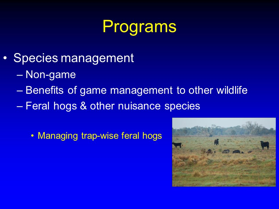 Programs Species management –Non-game –Benefits of game management to other wildlife –Feral hogs & other nuisance species Managing trap-wise feral hogs