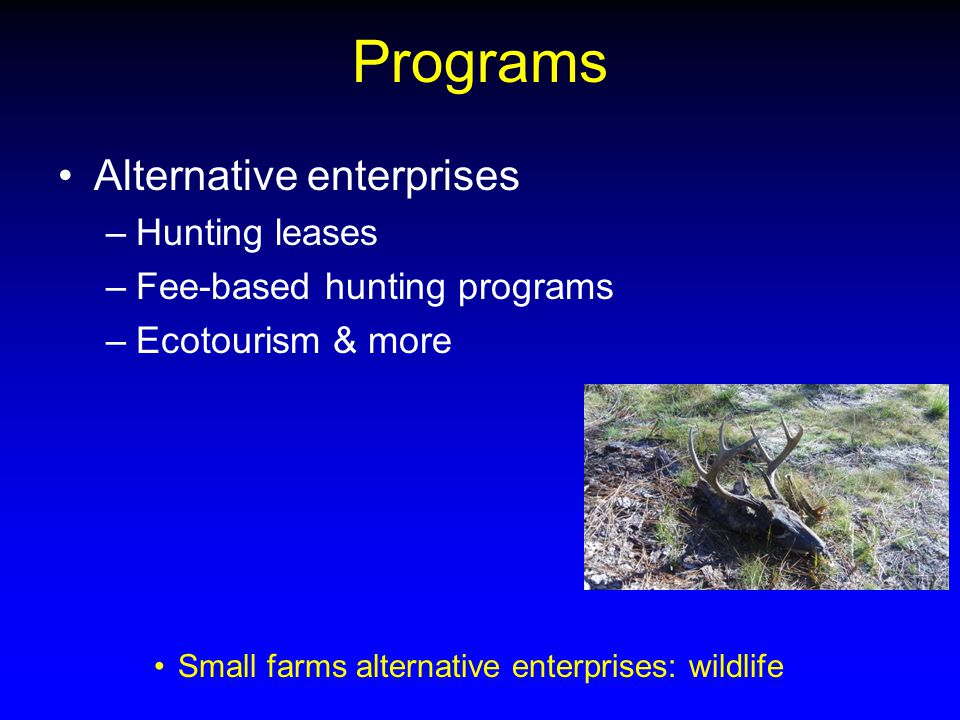 Programs Alternative enterprises –Hunting leases –Fee-based hunting programs –Ecotourism & more Small farms alternative enterprises: wildlife