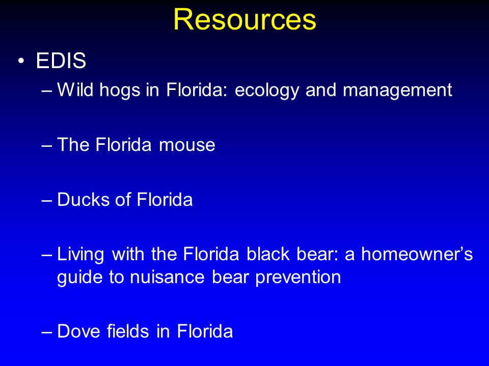 Resources EDIS –Wild hogs in Florida: ecology and management –The Florida mouse –Ducks of Florida –Living with the Florida black bear: a homeowner's guide to nuisance bear prevention –Dove fields in Florida