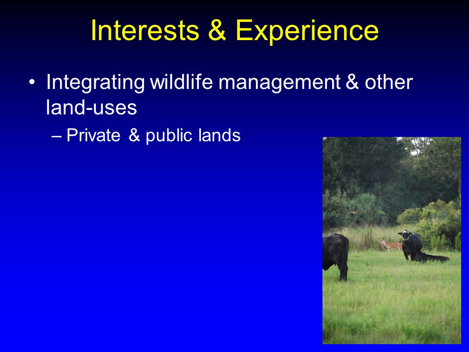 Interests & Experience Integrating wildlife management & other land-uses –Private & public lands
