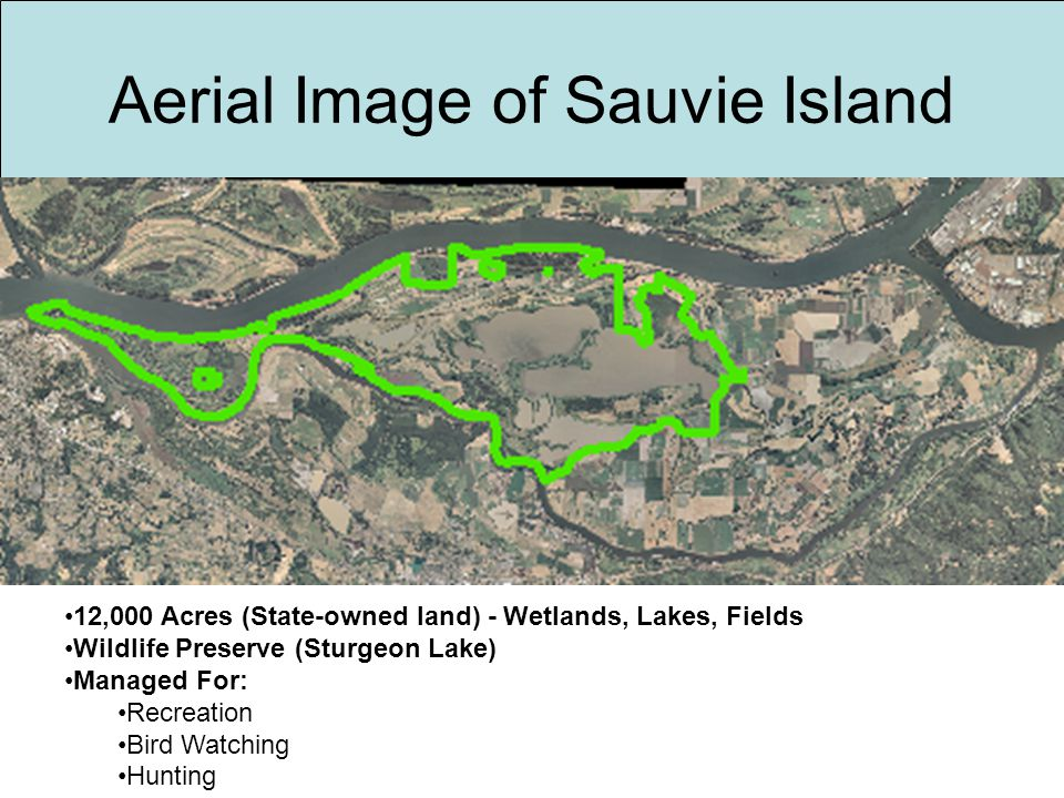 Aerial Image of Sauvie Island 12,000 Acres (State-owned land) - Wetlands, Lakes, Fields Wildlife Preserve (Sturgeon Lake) Managed For: Recreation Bird Watching Hunting