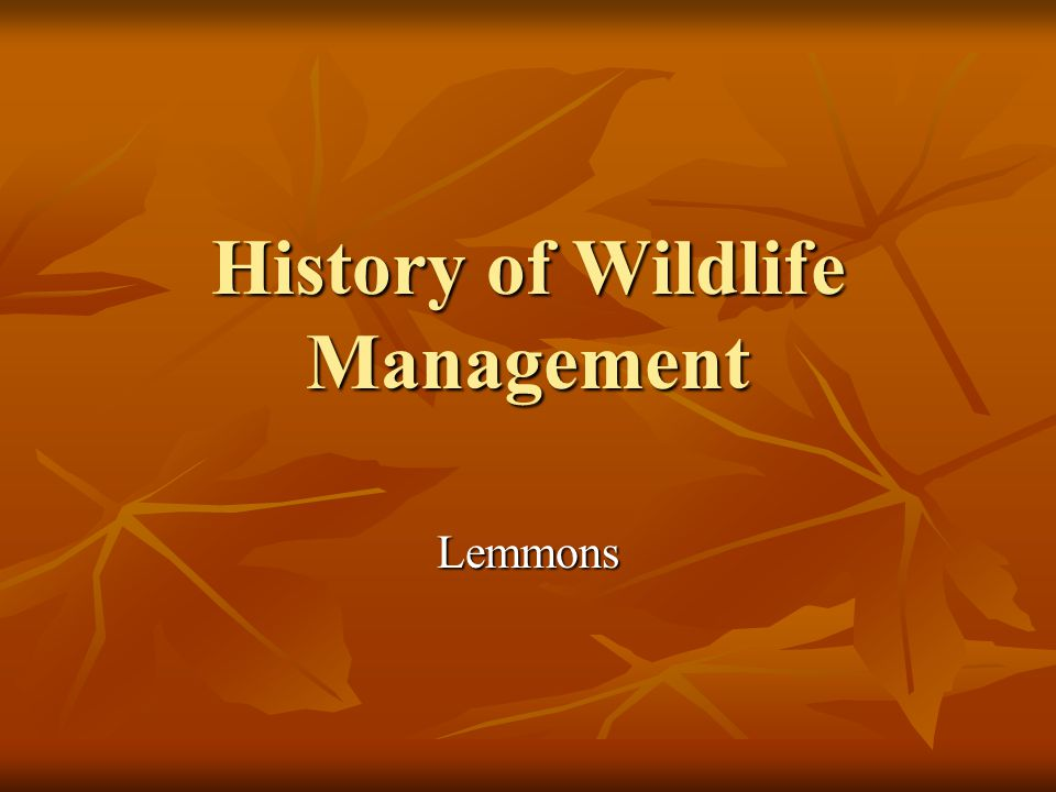 History of Wildlife Management Lemmons