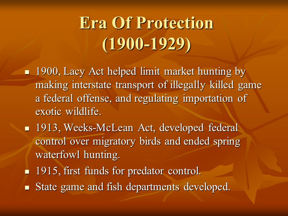 Era Of Protection (1900-1929) 1900, Lacy Act helped limit market hunting by making interstate transport of illegally killed game a federal offense, an