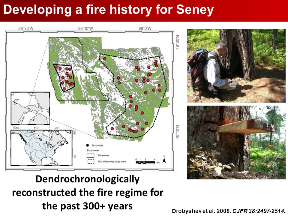 Seney National Wildlife Refuge Developing a fire history for Seney Dendrochronologically reconstructed the fire regime for the past 300+ years Drobyshev et al.