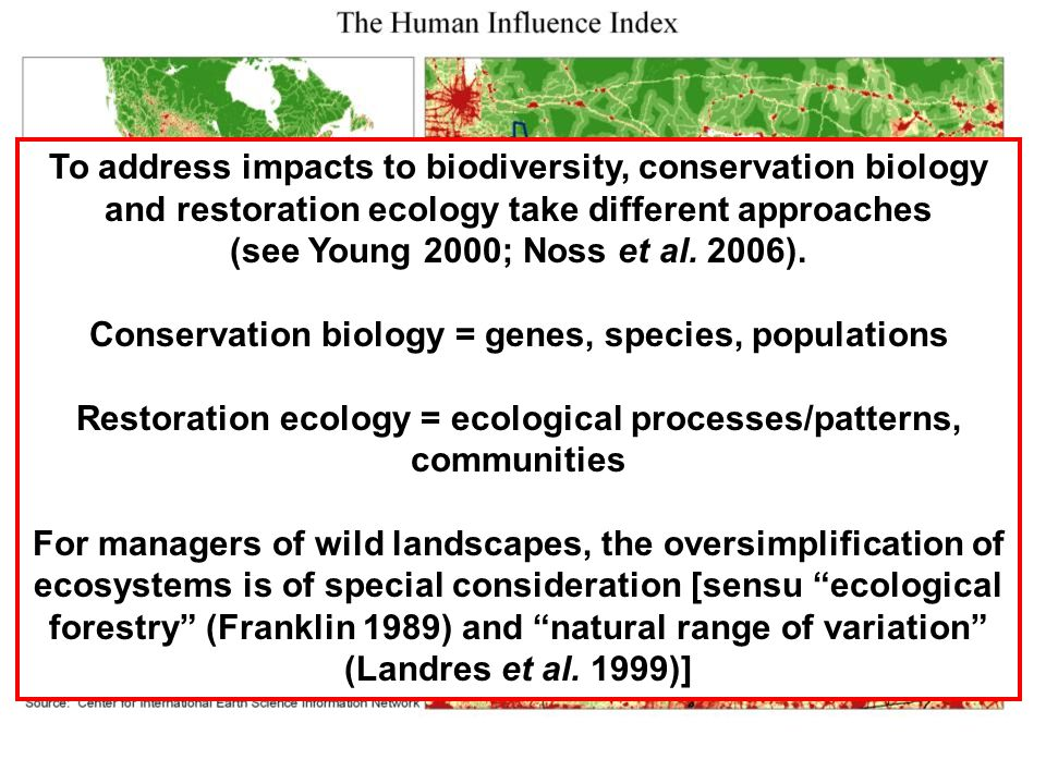 To address impacts to biodiversity, conservation biology and restoration ecology take different approaches (see Young 2000; Noss et al.