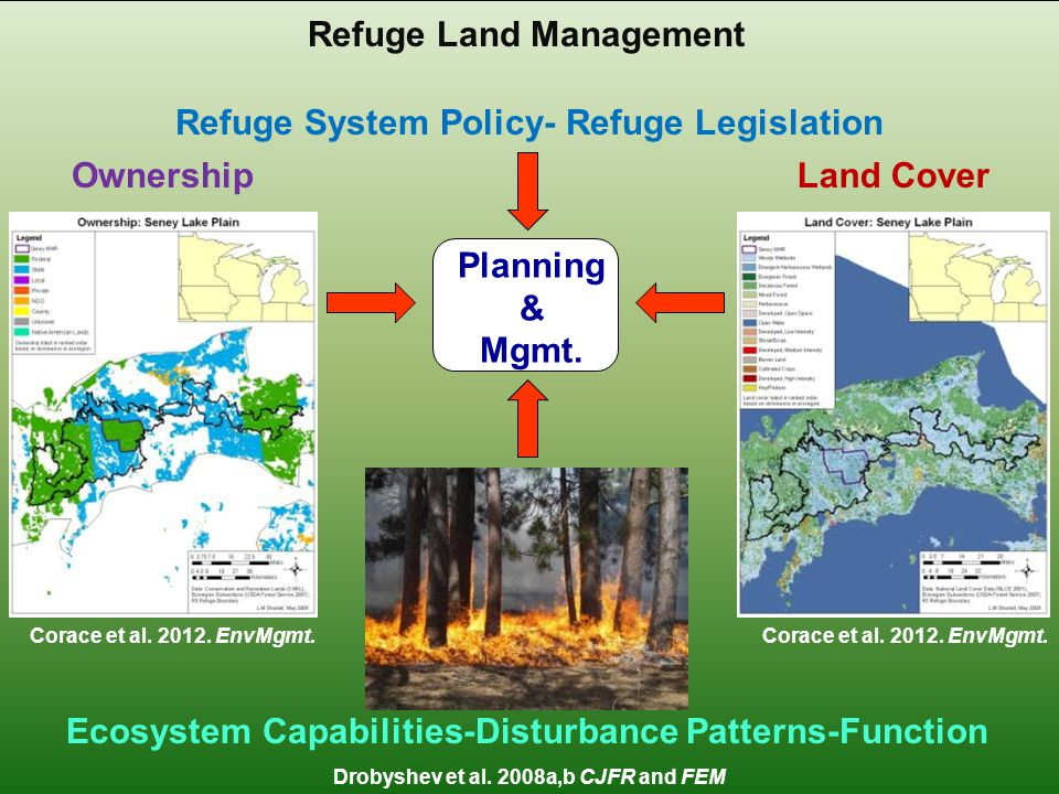 Seney National Wildlife Refuge Celebrating a Century of Conservation Refuge Land Management OwnershipLand Cover Refuge System Policy- Refuge Legislation Ecosystem Capabilities-Disturbance Patterns-Function Planning & Mgmt.