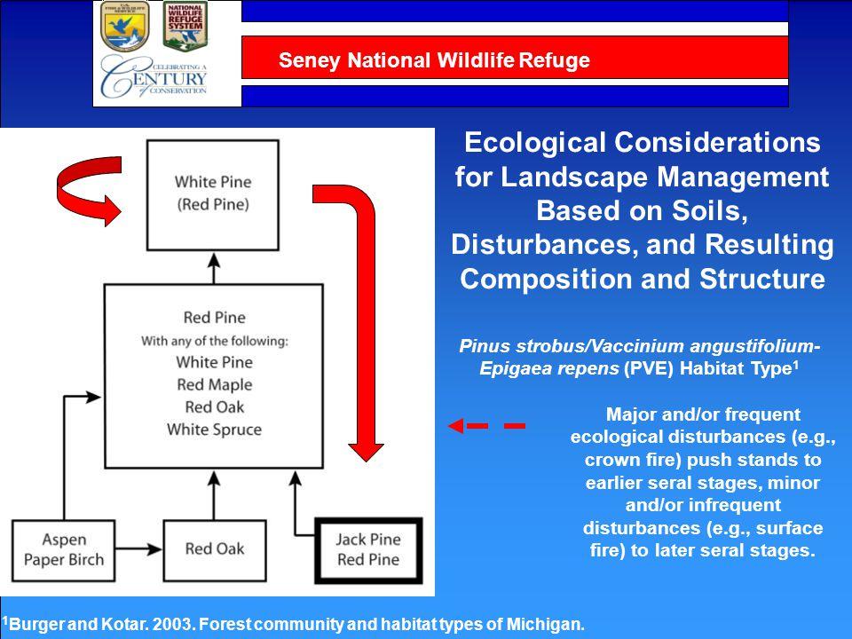 Seney National Wildlife Refuge Bork et al.2013. Am.