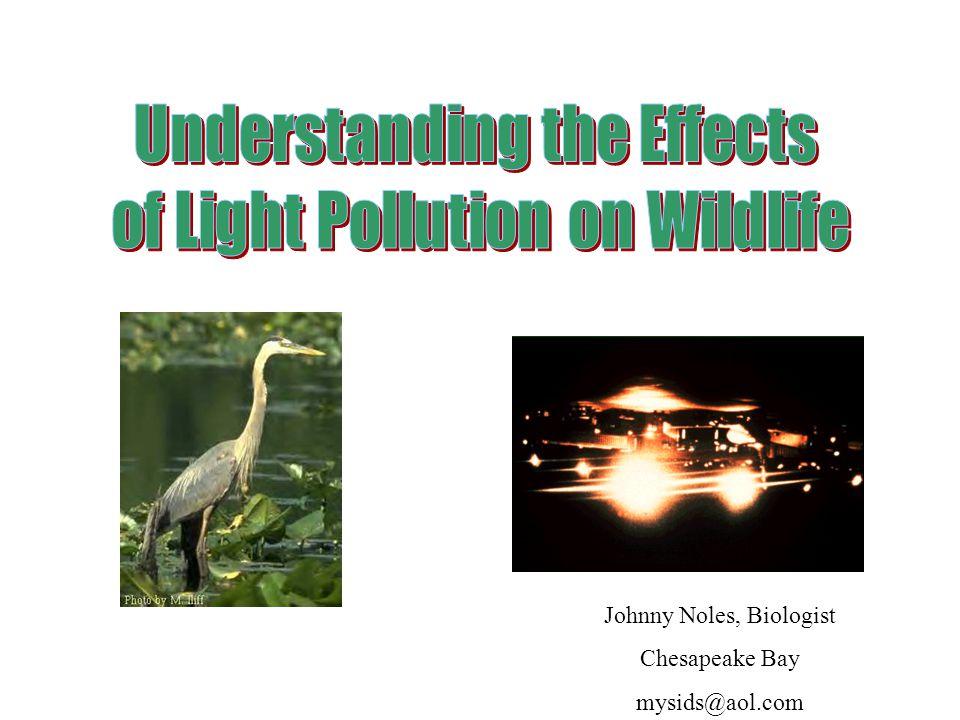 Johnny Noles, Biologist Chesapeake Bay mysids@aol.com