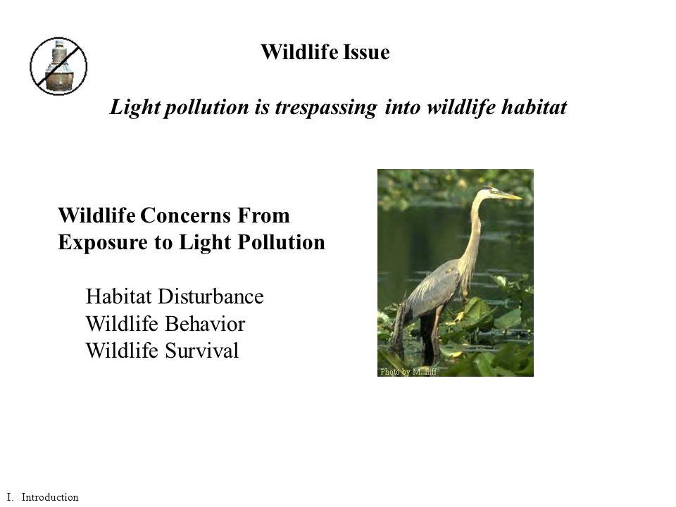 Light pollution is trespassing into wildlife habitat Wildlife Concerns From Exposure to Light Pollution Habitat Disturbance Wildlife Behavior Wildlife Survival Wildlife Issue I.