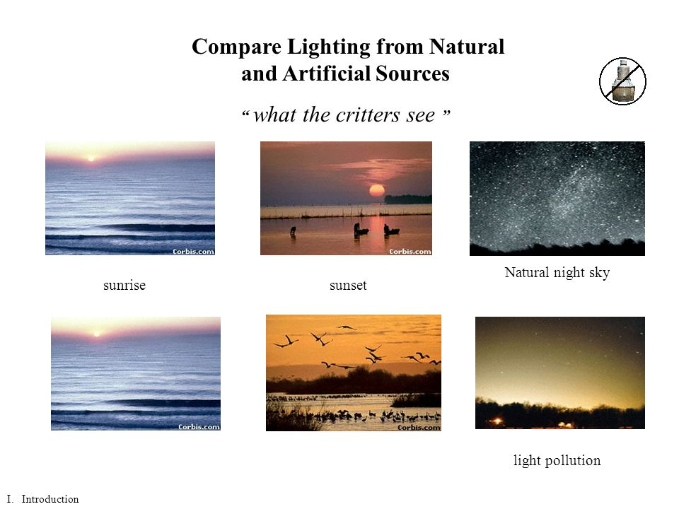 sunrisesunset Natural night sky light pollution Compare Lighting from Natural and Artificial Sources what the critters see I.
