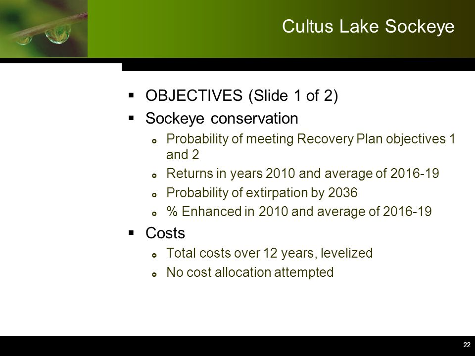 22 Cultus Lake Sockeye  OBJECTIVES (Slide 1 of 2)  Sockeye conservation  Probability of meeting Recovery Plan objectives 1 and 2  Returns in years 2010 and average of 2016-19  Probability of extirpation by 2036  % Enhanced in 2010 and average of 2016-19  Costs  Total costs over 12 years, levelized  No cost allocation attempted 22