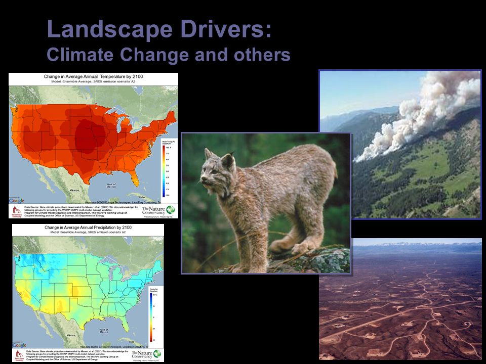 Landscape Drivers: Climate Change and others