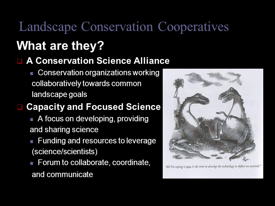 Landscape Conservation Cooperatives What are they.