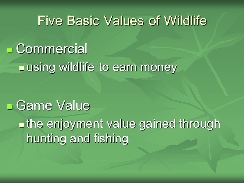 Five Basic Values of Wildlife Commercial Commercial using wildlife to earn money using wildlife to earn money Game Value Game Value the enjoyment valu