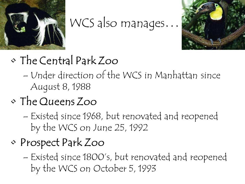 WCS also manages … The Central Park Zoo –Under direction of the WCS in Manhattan since August 8, 1988 The Queens Zoo –Existed since 1968, but renovated and reopened by the WCS on June 25, 1992 Prospect Park Zoo –Existed since 1800's, but renovated and reopened by the WCS on October 5, 1993