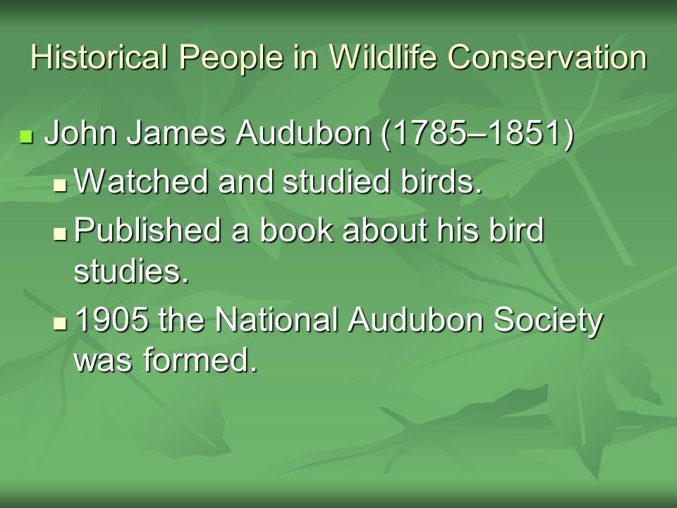 Historical People in Wildlife Conservation John James Audubon (1785–1851) John James Audubon (1785–1851) Watched and studied birds.