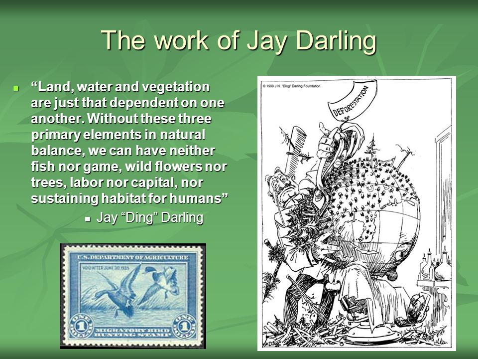 The work of Jay Darling Land, water and vegetation are just that dependent on one another.