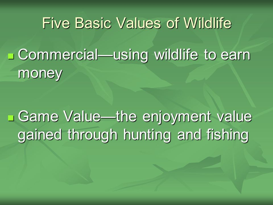 Five Basic Values of Wildlife Commercial—using wildlife to earn money Commercial—using wildlife to earn money Game Value—the enjoyment value gained through hunting and fishing Game Value—the enjoyment value gained through hunting and fishing