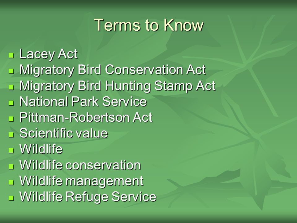 Terms to Know Lacey Act Lacey Act Migratory Bird Conservation Act Migratory Bird Conservation Act Migratory Bird Hunting Stamp Act Migratory Bird Hunting Stamp Act National Park Service National Park Service Pittman-Robertson Act Pittman-Robertson Act Scientific value Scientific value Wildlife Wildlife Wildlife conservation Wildlife conservation Wildlife management Wildlife management Wildlife Refuge Service Wildlife Refuge Service
