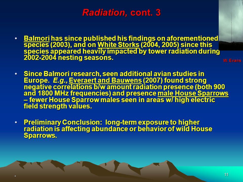 11 Radiation, cont. 3 Balmori has since published his findings on aforementioned species (2003), and on White Storks (2004, 2005) since this species a