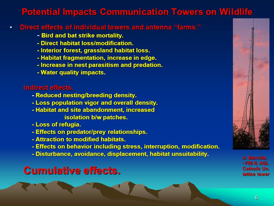 6 Potential Impacts Communication Towers on Wildlife Direct effects of individual towers and antenna farms. Direct effects of individual towers and antenna farms. - Bird and bat strike mortality.