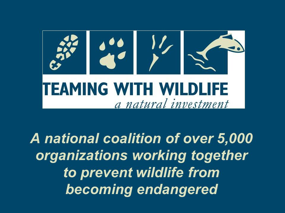 State Wildlife Grant Successes Conservation Conserving Wildlife and Natural Areas for Future Generations Research Gathering Information to Take Action Restoration Working Together to Bring Back Wildlife and Natural Areas