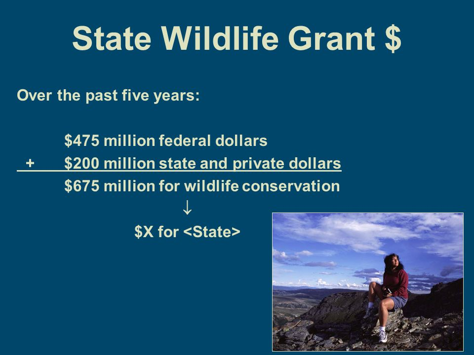 State Wildlife Grant $ Over the past five years: $475 million federal dollars + $200 million state and private dollars $675 million for wildlife conservation  $X for
