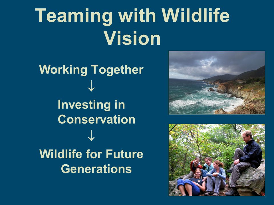 Teaming with Wildlife Vision Working Together  Investing in Conservation  Wildlife for Future Generations