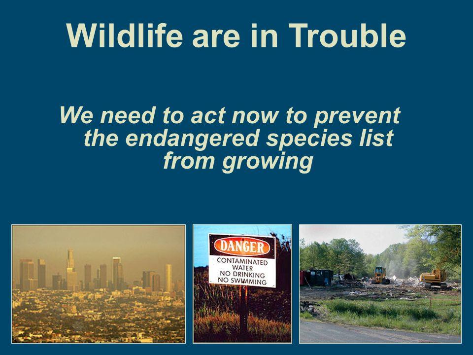 Wildlife Diversity Budget Average for 32 States