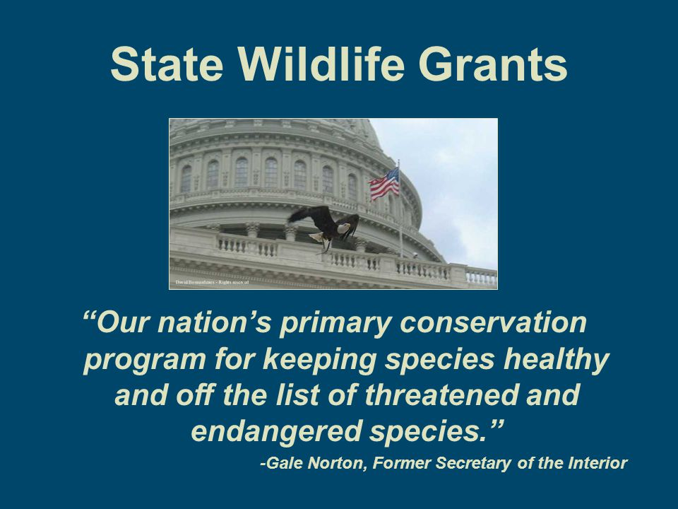 Conservation Funding State Wildlife Grants appropriations vary year-to-year.