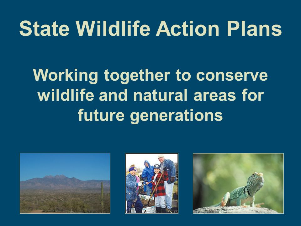 Double Wildlife Funding Nationwide Federal New and greater funding for wildlife conservation, wildlife-related recreation, and conservation education State Multi-million dollar legislative appropriations and ballot initiatives Private Foundations and Conservation Partners