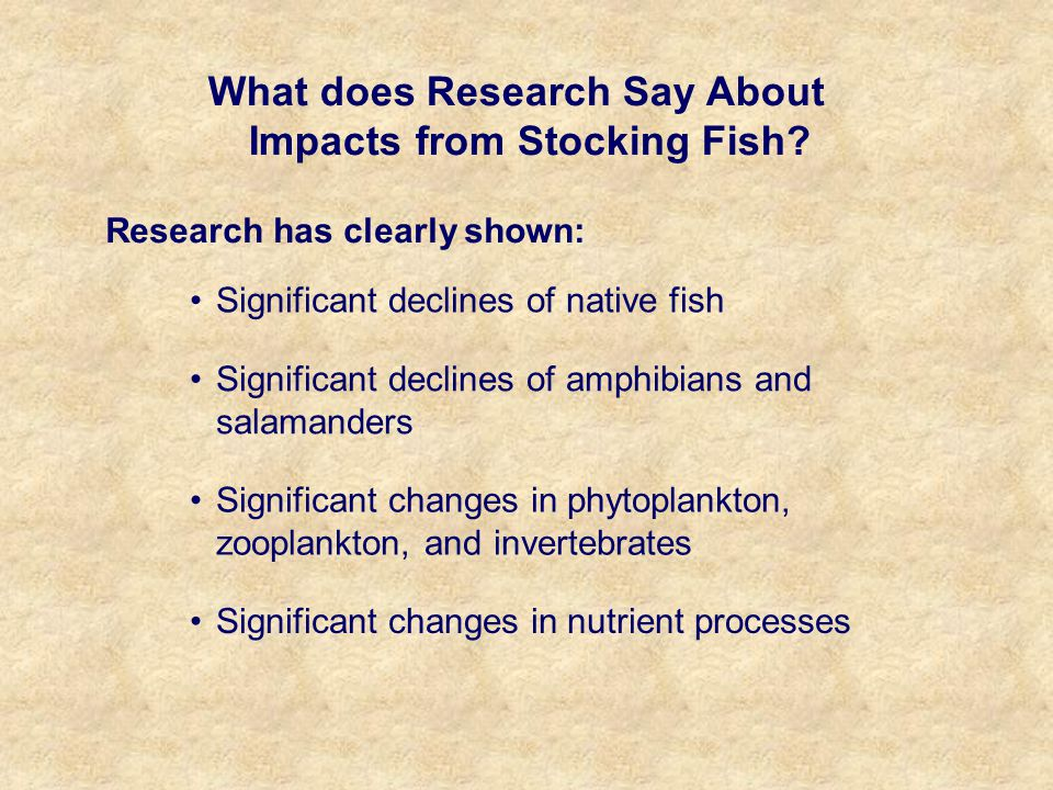 What does Research Say About Impacts from Stocking Fish.