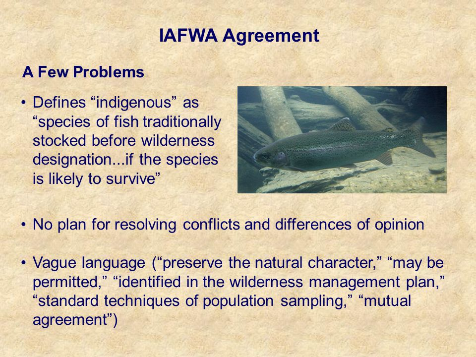 Defines indigenous as species of fish traditionally stocked before wilderness designation...if the species is likely to survive IAFWA Agreement A Few Problems No plan for resolving conflicts and differences of opinion Vague language ( preserve the natural character, may be permitted, identified in the wilderness management plan, standard techniques of population sampling, mutual agreement )